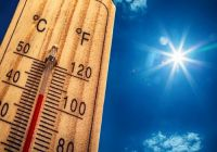 Frosinone, ondata di calore di giovedì: locale climatizzato per gli anziani